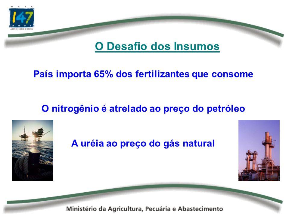 O Desafio dos Insumos País importa 65% dos fertilizantes que consome