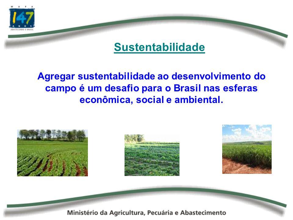 SustentabilidadeAgregar sustentabilidade ao desenvolvimento do campo é um desafio para o Brasil nas esferas econômica, social e ambiental.