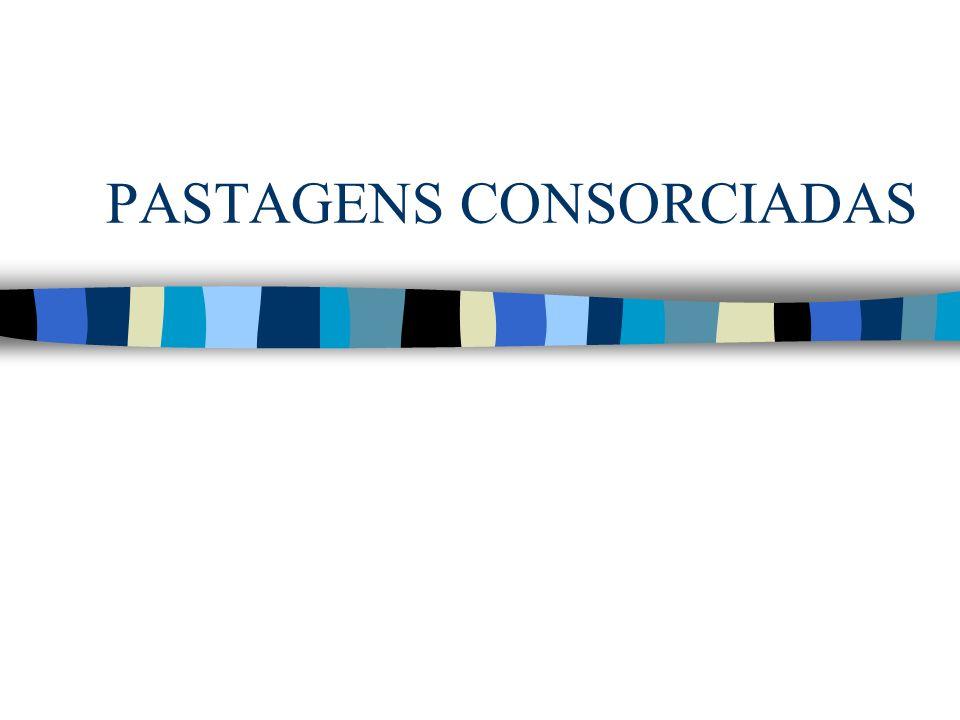 PASTAGENS CONSORCIADAS