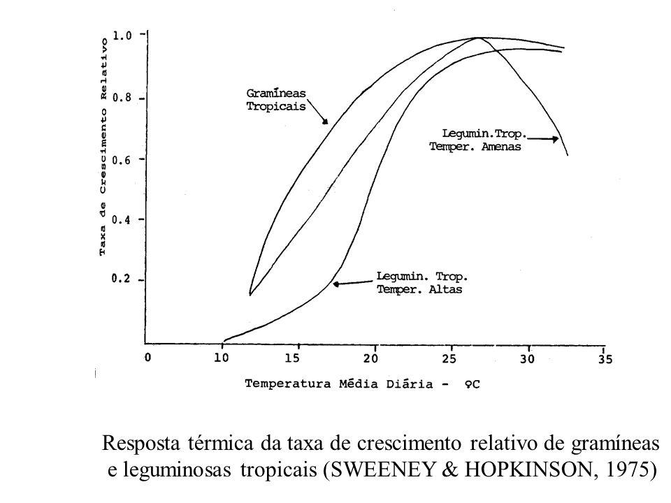 Resposta térmica da taxa de crescimento relativo de gramíneas