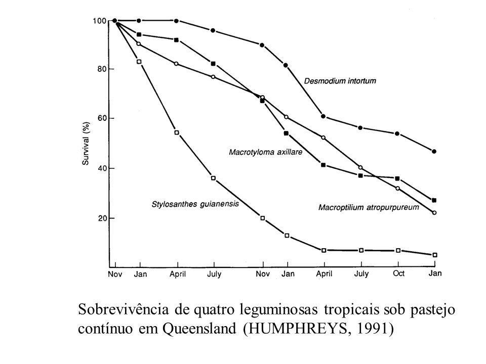 Sobrevivência de quatro leguminosas tropicais sob pastejo