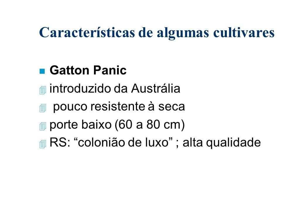 Características de algumas cultivares
