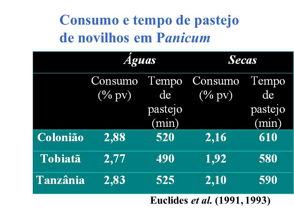 Consumo e tempo de pastejo de novilhos em Panicum