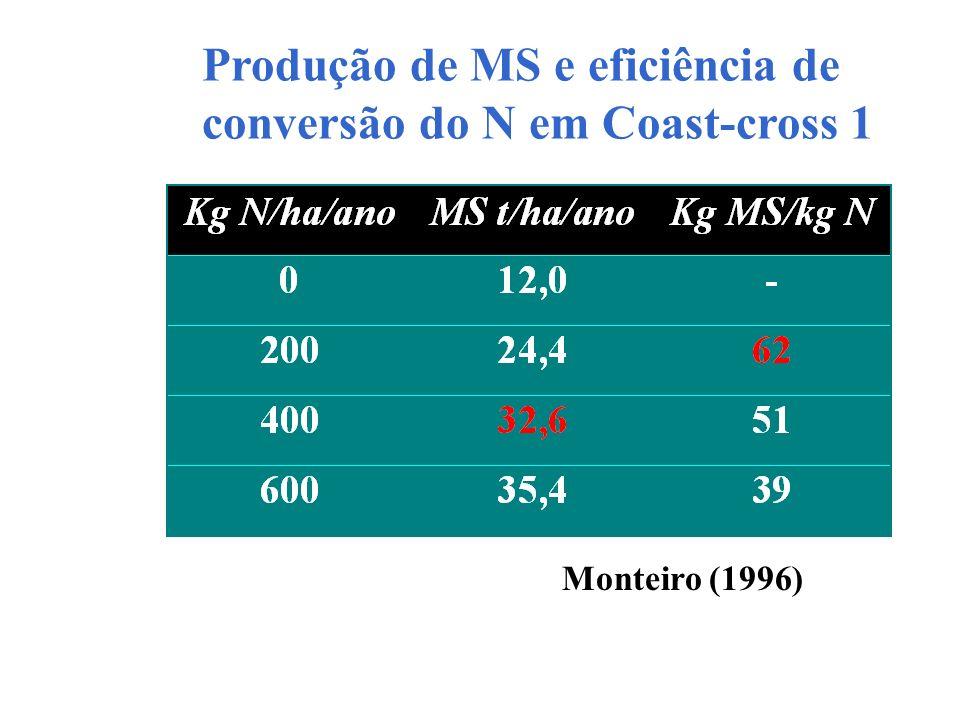 Produção de MS e eficiência de conversão do N em Coast-cross 1