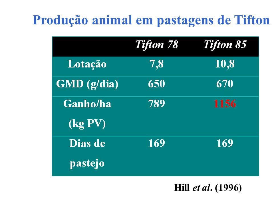 Produção animal em pastagens de Tifton