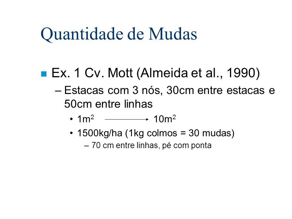 Quantidade de Mudas Ex. 1 Cv. Mott (Almeida et al., 1990)