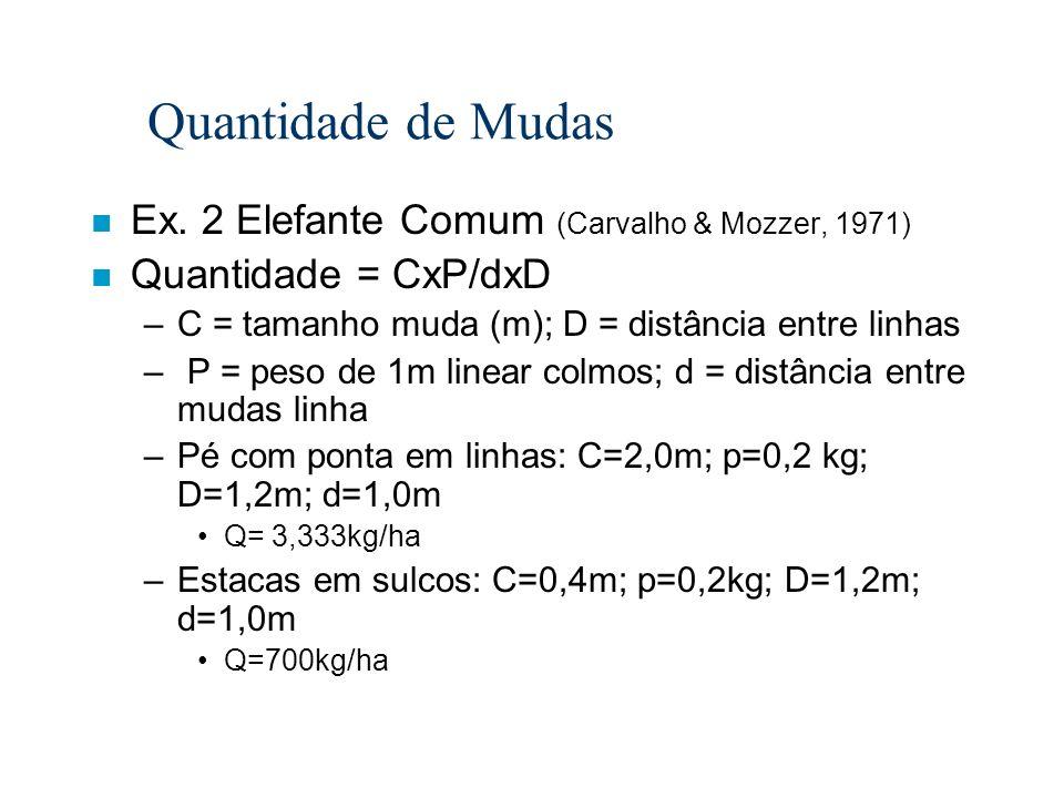 Quantidade de Mudas Ex. 2 Elefante Comum (Carvalho & Mozzer, 1971)