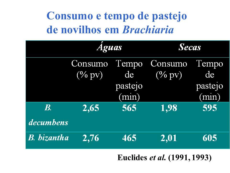 Consumo e tempo de pastejo de novilhos em Brachiaria