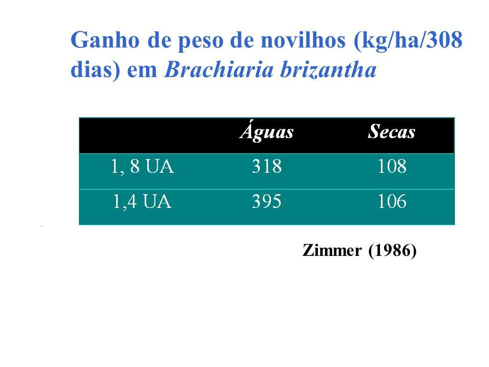 Ganho de peso de novilhos (kg/ha/308 dias) em Brachiaria brizantha