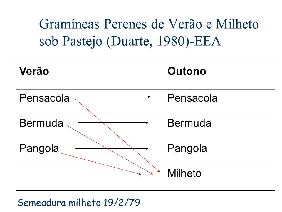 Gramíneas Perenes de Verão e Milheto sob Pastejo (Duarte, 1980)-EEA