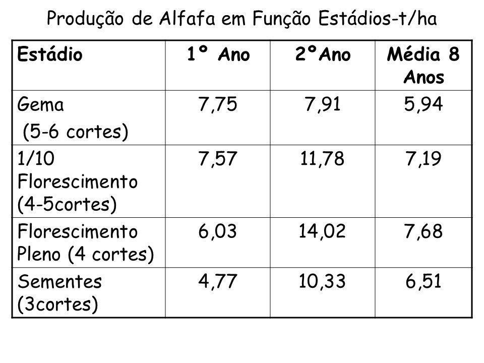 Produção de Alfafa em Função Estádios-t/ha