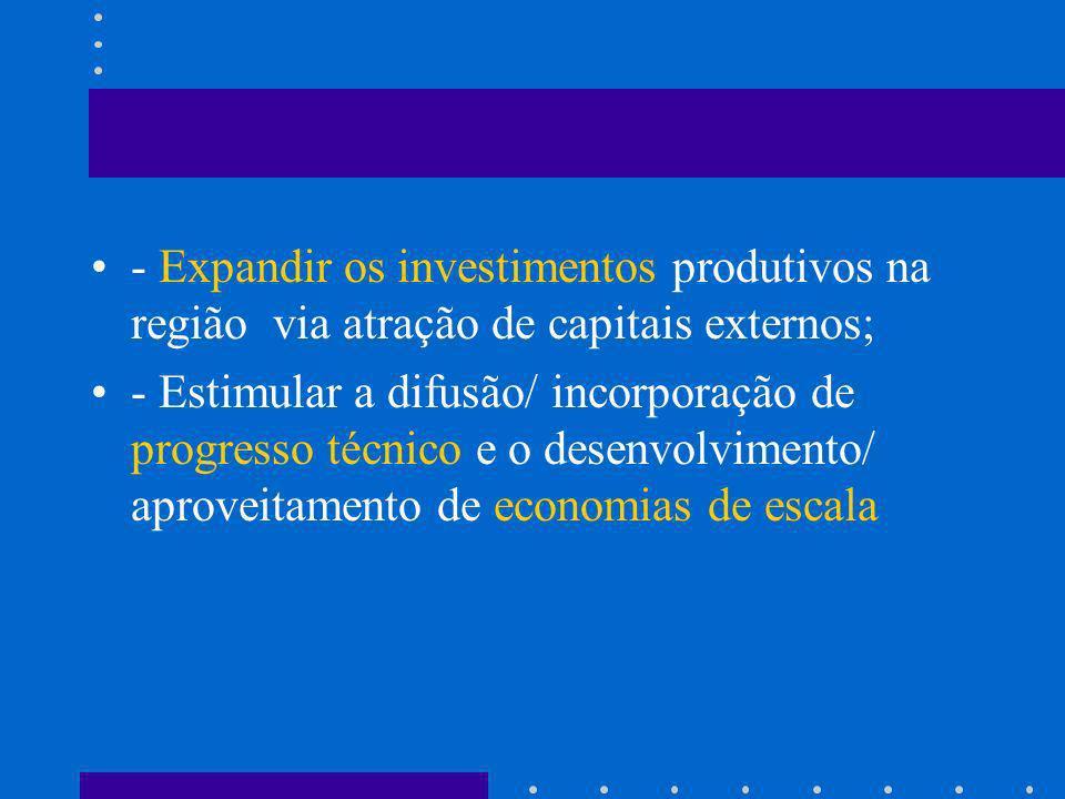 - Expandir os investimentos produtivos na região via atração de capitais externos;