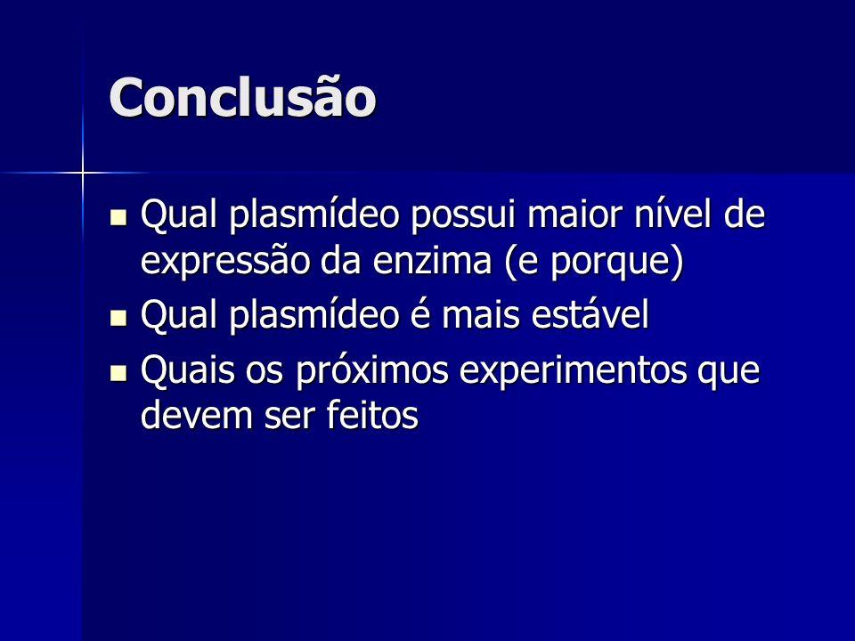 Conclusão Qual plasmídeo possui maior nível de expressão da enzima (e porque) Qual plasmídeo é mais estável.