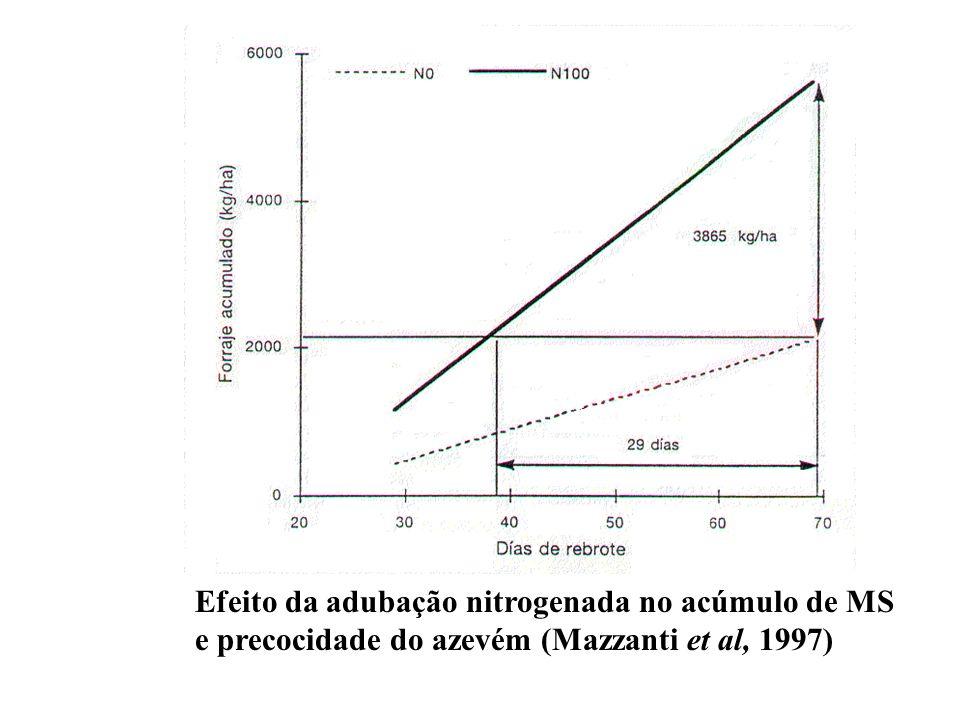Efeito da adubação nitrogenada no acúmulo de MS