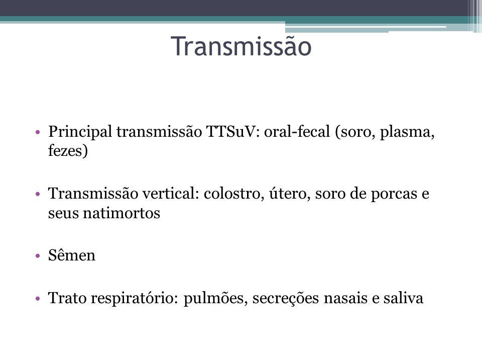 Transmissão Principal transmissão TTSuV: oral-fecal (soro, plasma, fezes) Transmissão vertical: colostro, útero, soro de porcas e seus natimortos.