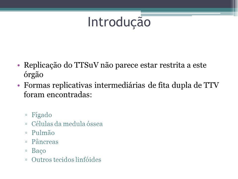 Introdução Replicação do TTSuV não parece estar restrita a este órgão
