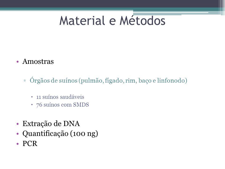 Material e Métodos Amostras Extração de DNA Quantificação (100 ng) PCR