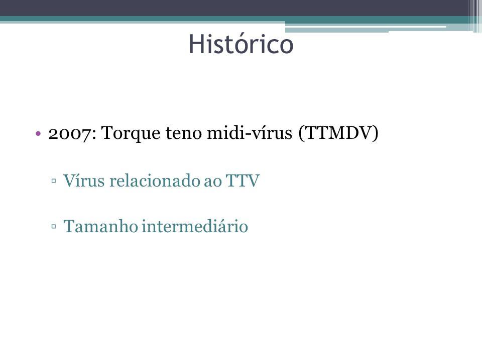 Histórico 2007: Torque teno midi-vírus (TTMDV)