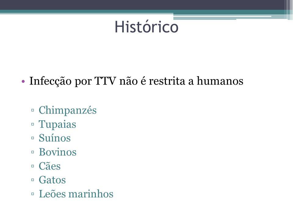 Histórico Infecção por TTV não é restrita a humanos Chimpanzés Tupaias