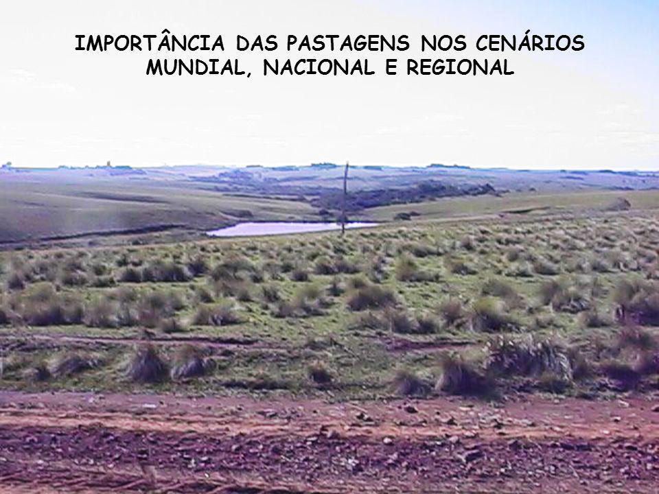 IMPORTÂNCIA DAS PASTAGENS NOS CENÁRIOS MUNDIAL, NACIONAL E REGIONAL