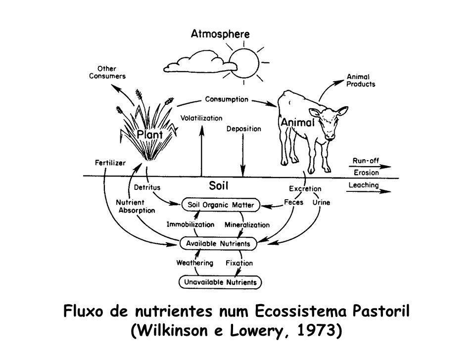 Fluxo de nutrientes num Ecossistema Pastoril