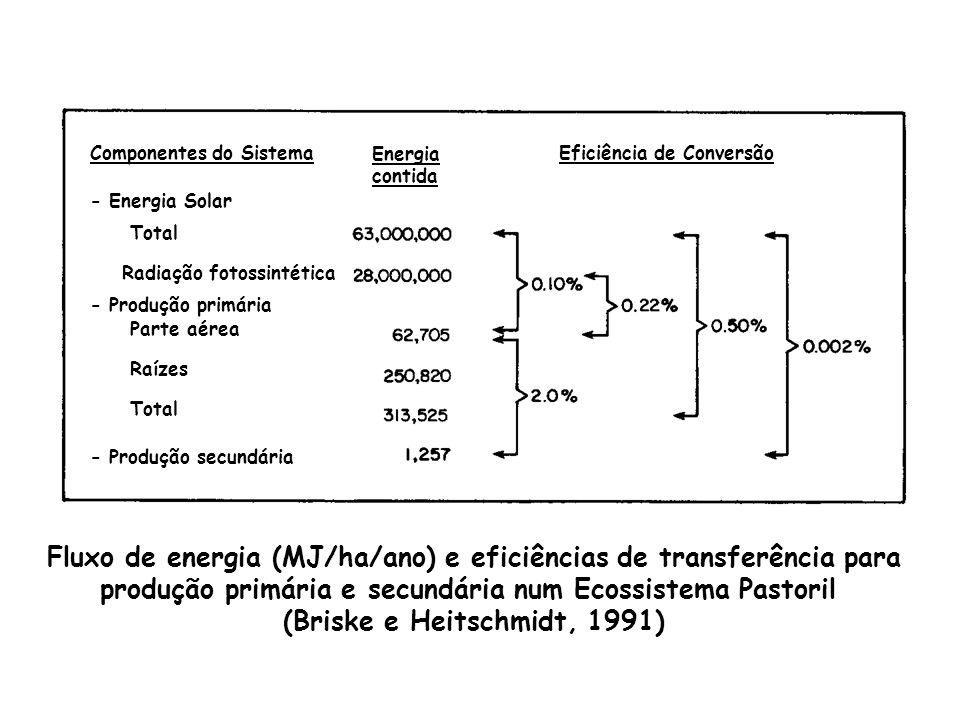 Fluxo de energia (MJ/ha/ano) e eficiências de transferência para