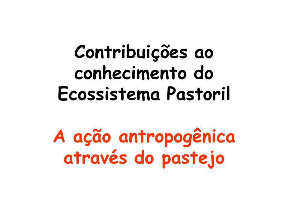 Contribuições ao conhecimento do Ecossistema Pastoril A ação antropogênica através do pastejo