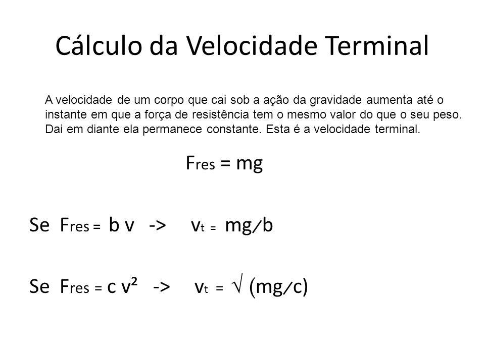 Cálculo da Velocidade Terminal