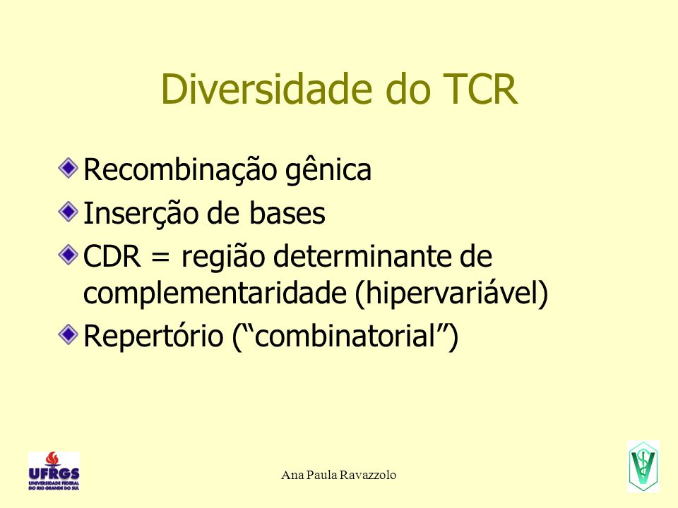 Diversidade do TCR Recombinação gênica Inserção de bases