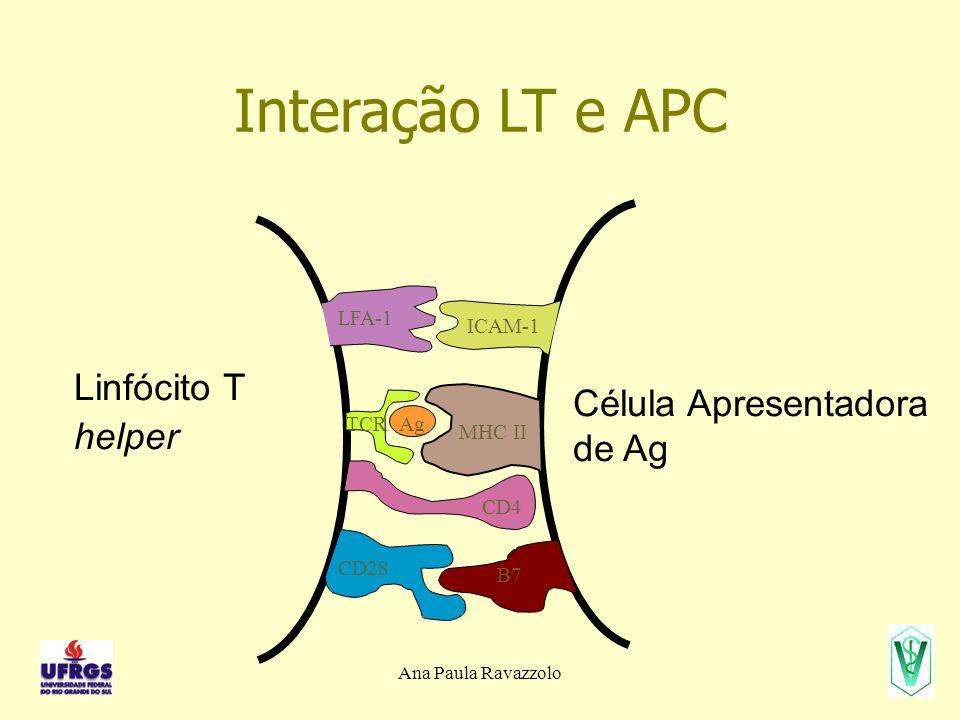 Interação LT e APC Linfócito T helper Célula Apresentadora de Ag LFA-1