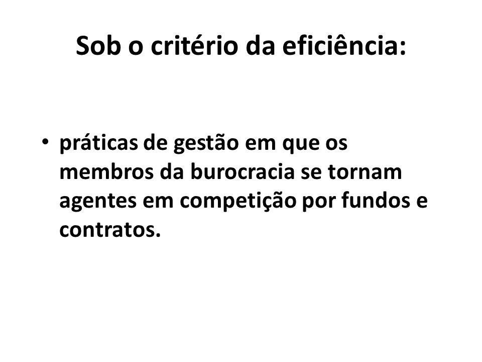 Sob o critério da eficiência: