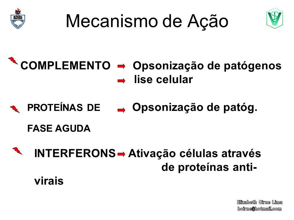 COMPLEMENTO Opsonização de patógenos lise celular
