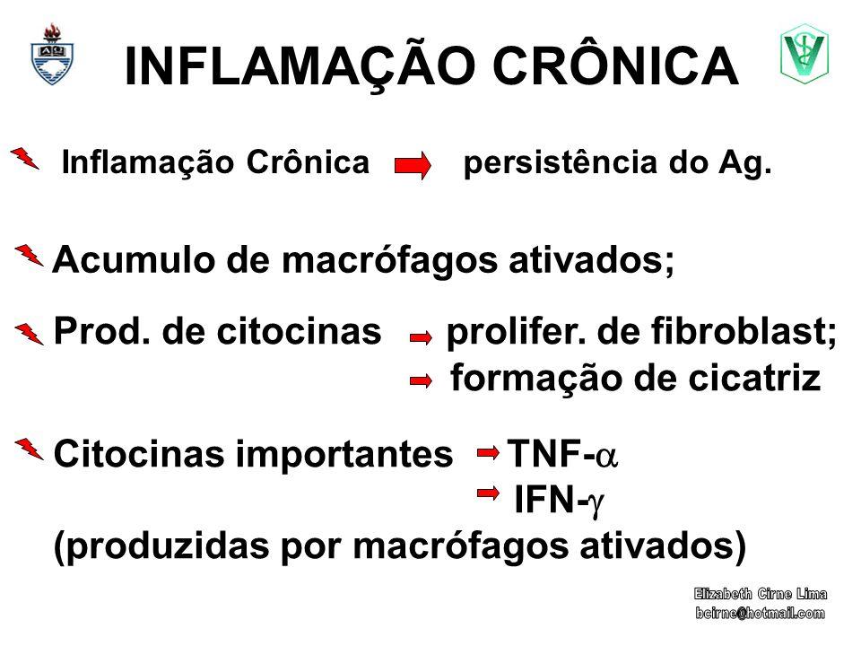 Inflamação Crônica persistência do Ag.
