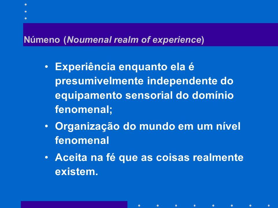 Númeno (Noumenal realm of experience)
