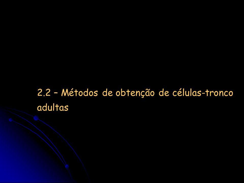 2.2 – Métodos de obtenção de células-tronco adultas