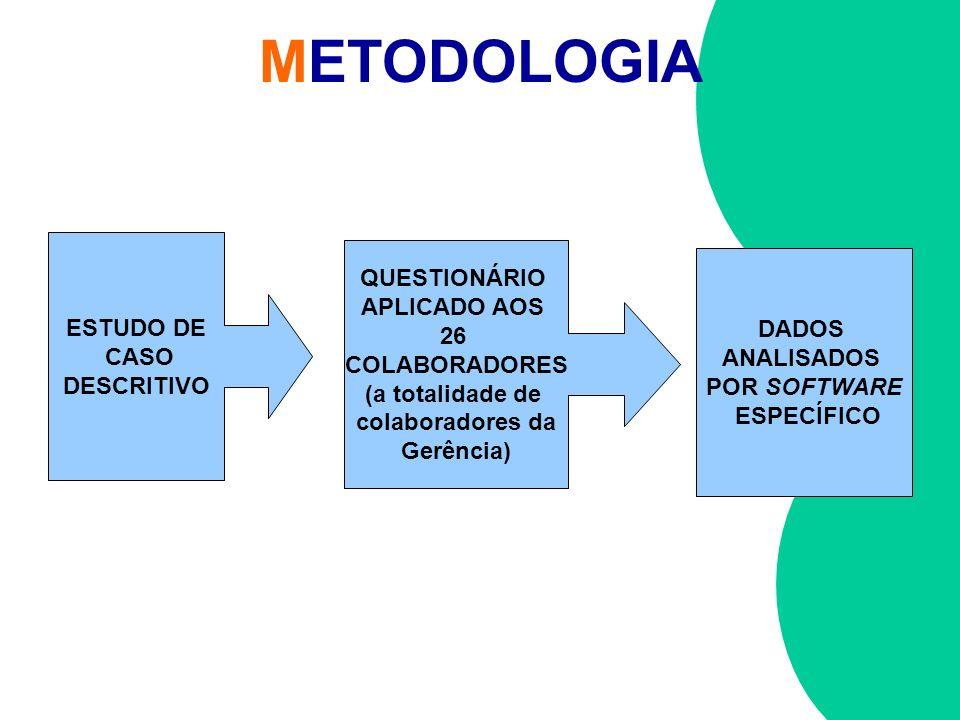 METODOLOGIA QUESTIONÁRIO APLICADO AOS ESTUDO DE 26 DADOS CASO
