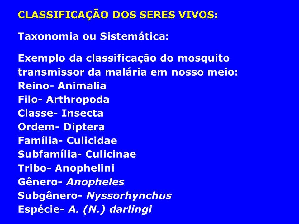 CLASSIFICAÇÃO DOS SERES VIVOS: