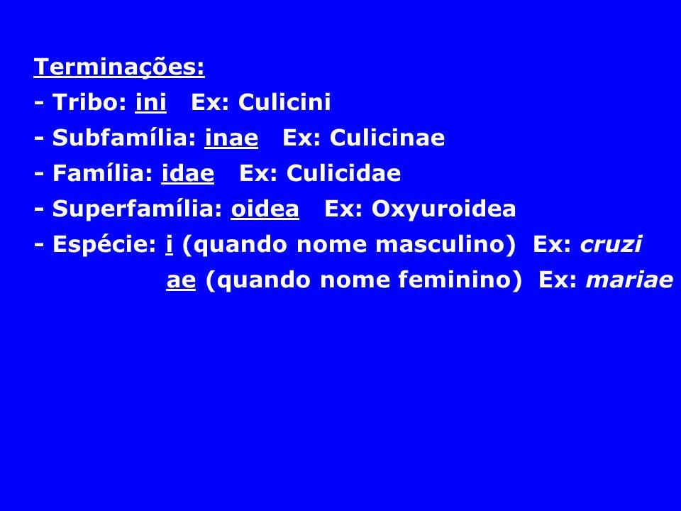 Terminações: - Tribo: ini Ex: Culicini. - Subfamília: inae Ex: Culicinae. - Família: idae Ex: Culicidae.