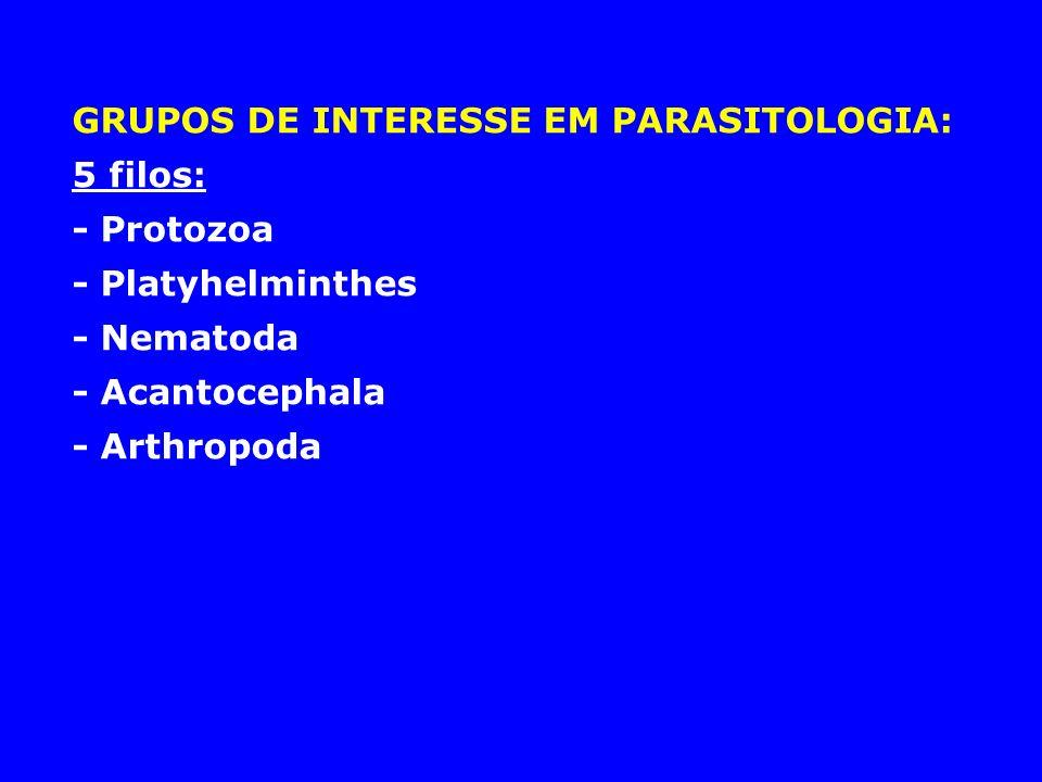 GRUPOS DE INTERESSE EM PARASITOLOGIA: