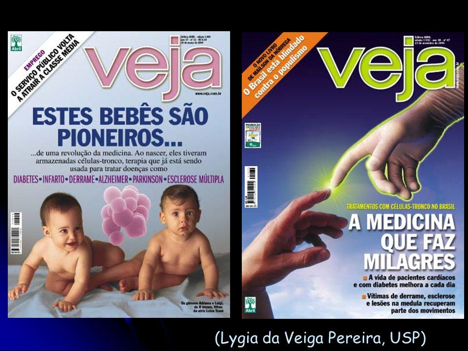 (Lygia da Veiga Pereira, USP)