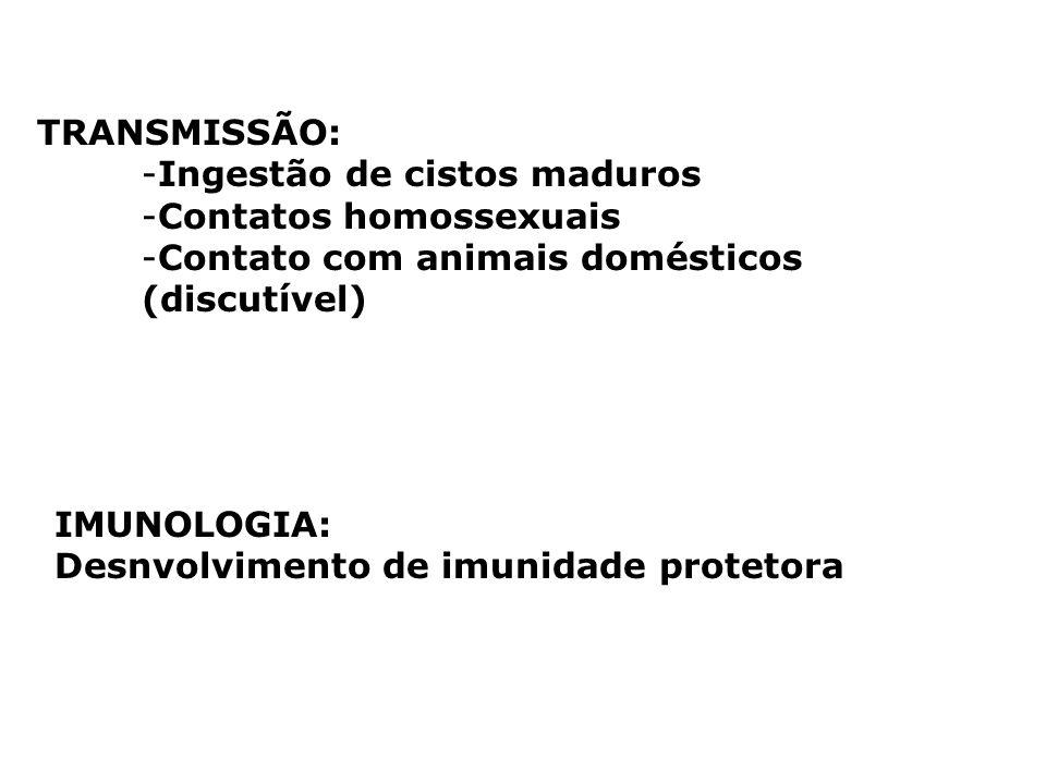 TRANSMISSÃO: Ingestão de cistos maduros. Contatos homossexuais. Contato com animais domésticos (discutível)