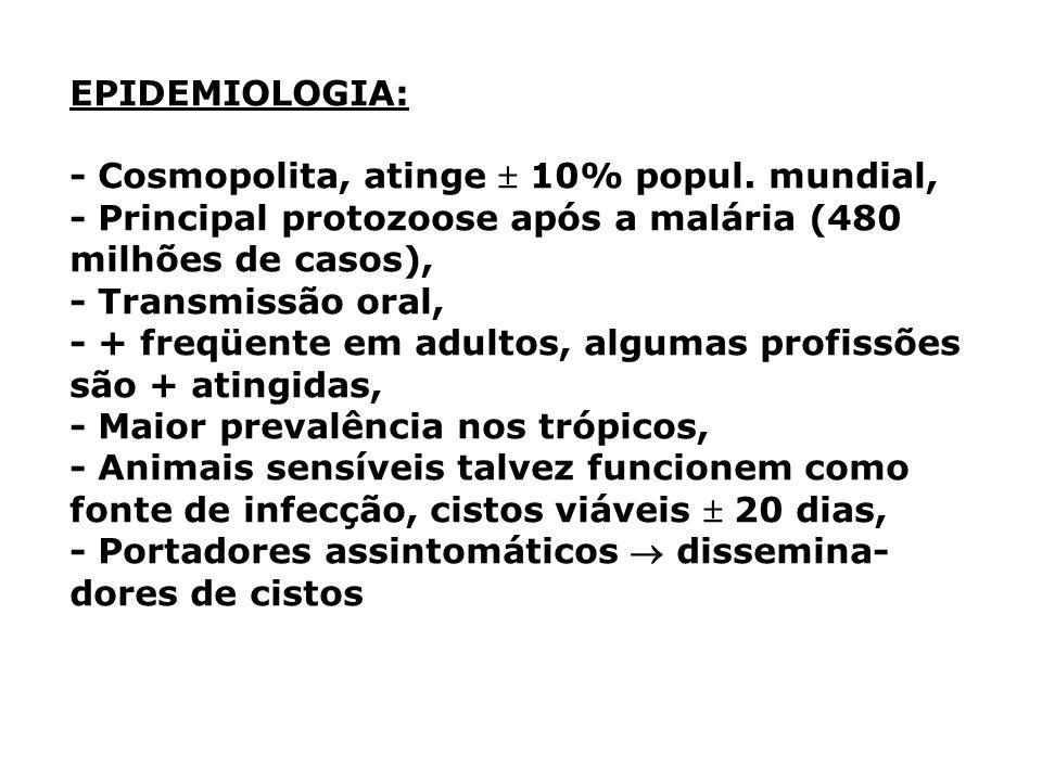 EPIDEMIOLOGIA: - Cosmopolita, atinge  10% popul. mundial, - Principal protozoose após a malária (480 milhões de casos),