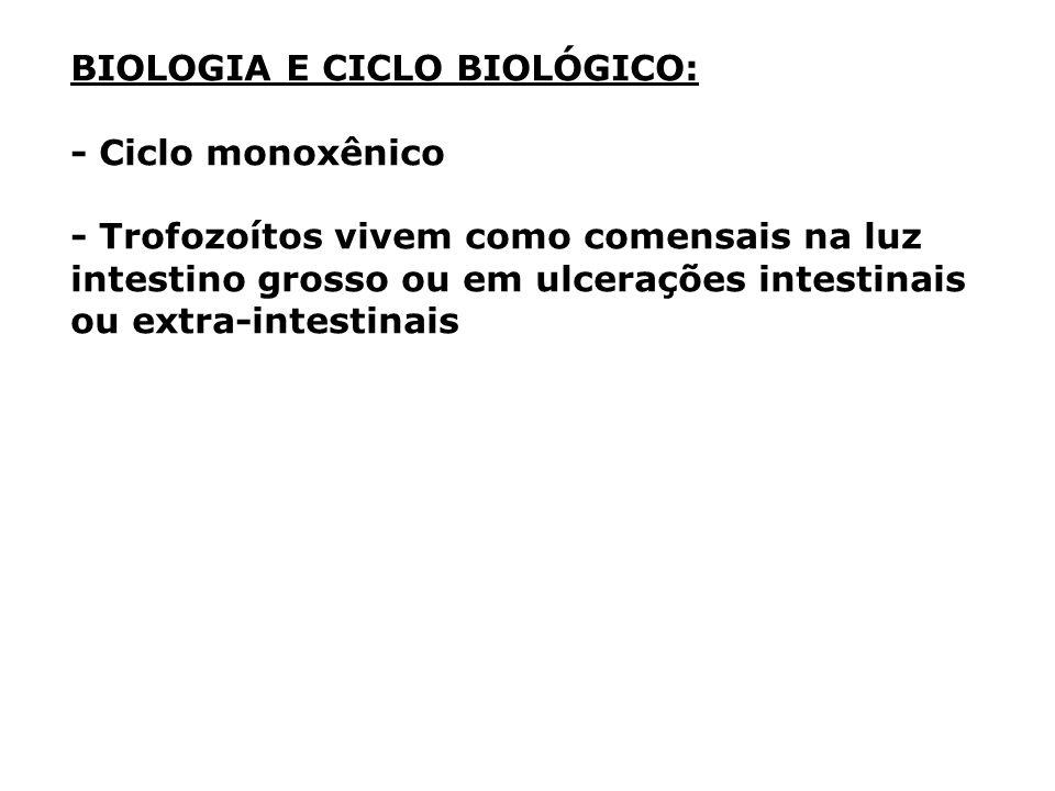 BIOLOGIA E CICLO BIOLÓGICO: