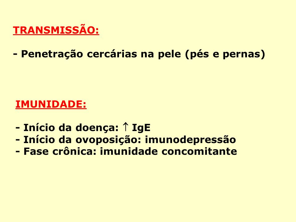 TRANSMISSÃO: - Penetração cercárias na pele (pés e pernas) IMUNIDADE: - Início da doença:  IgE. - Início da ovoposição: imunodepressão.