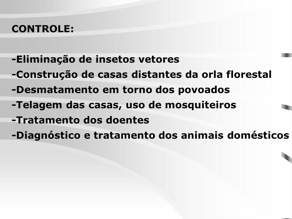 CONTROLE: -Eliminação de insetos vetores. -Construção de casas distantes da orla florestal. -Desmatamento em torno dos povoados.