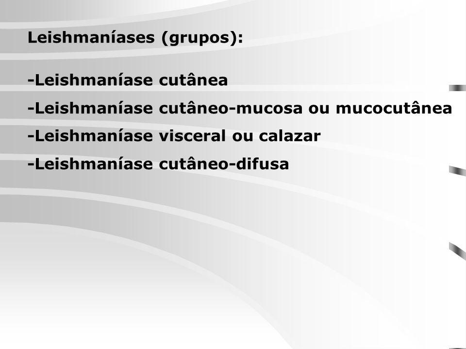 Leishmaníases (grupos):