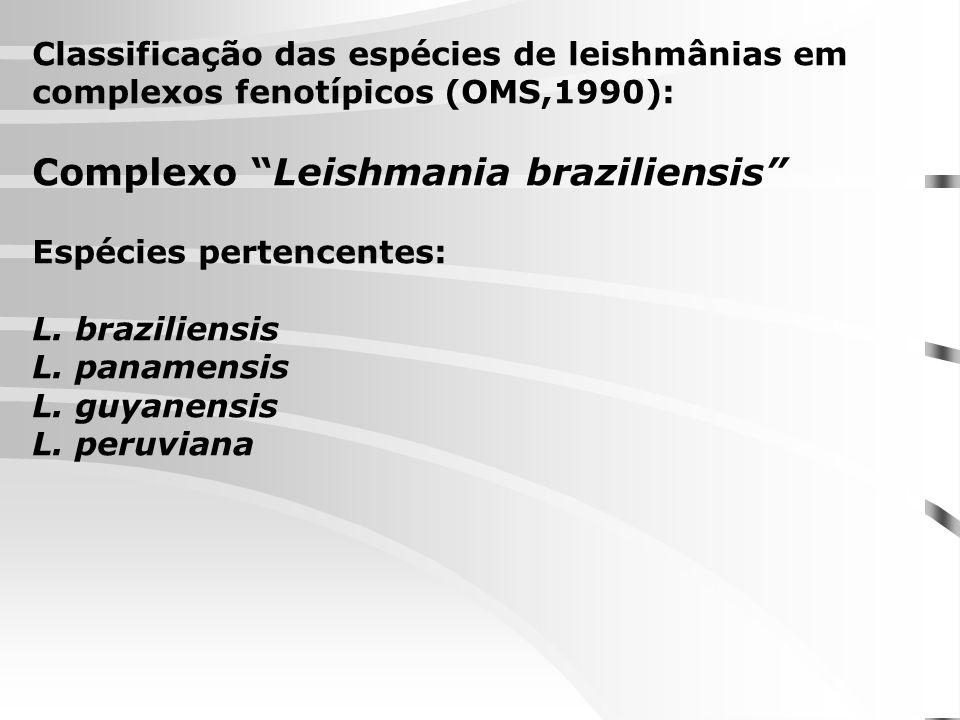 Complexo Leishmania braziliensis