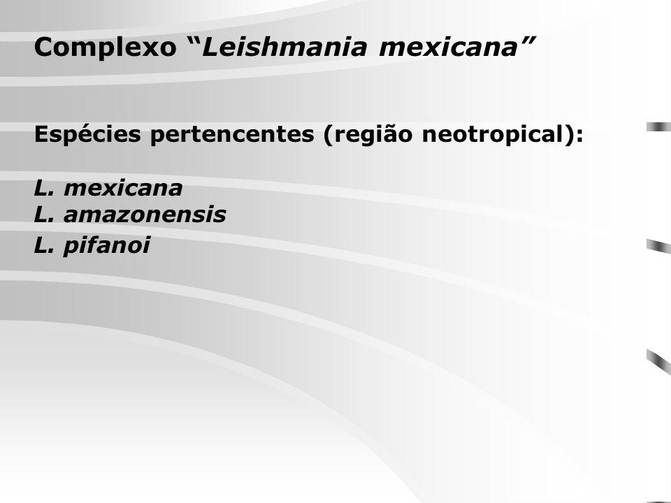 Complexo Leishmania mexicana