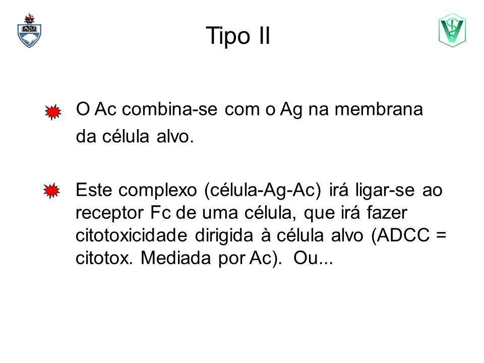 Tipo II O Ac combina-se com o Ag na membrana da célula alvo.