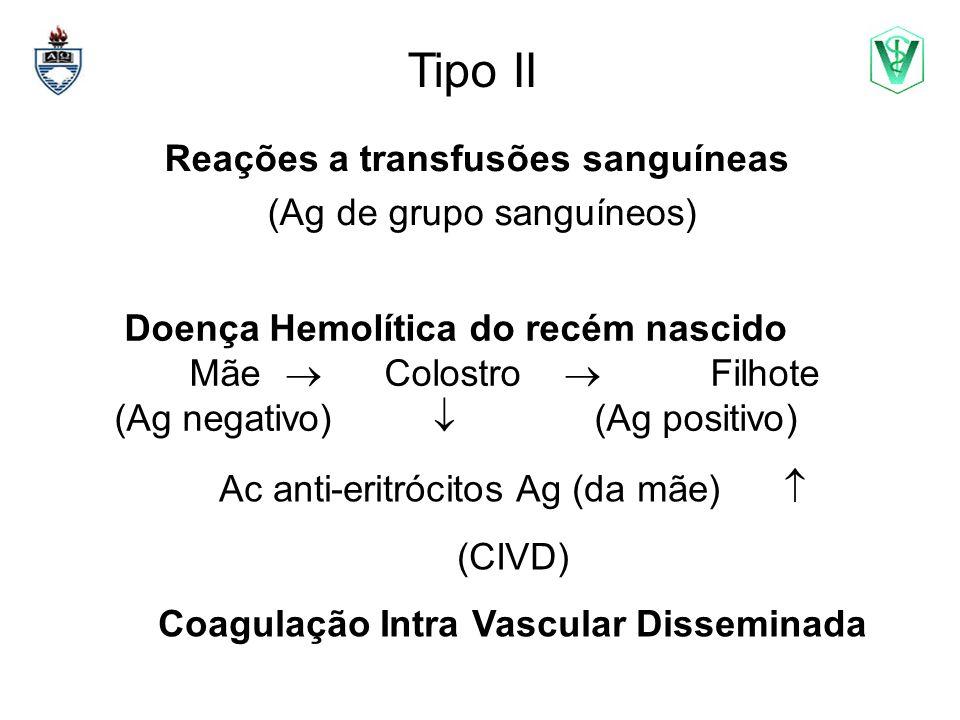Tipo II Reações a transfusões sanguíneas (Ag de grupo sanguíneos)